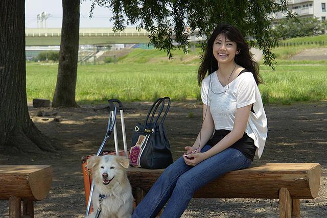 Aoi Sora Shiroi Kumo Asianwiki
