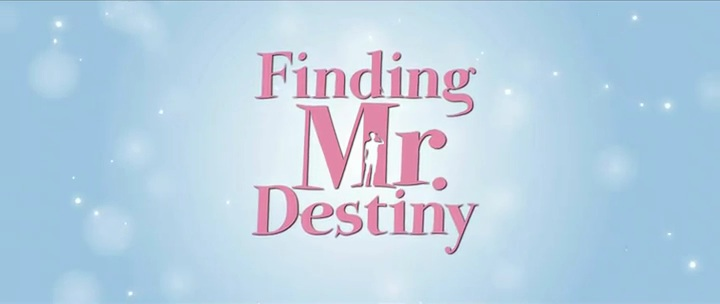 finding mr destiny eng sub