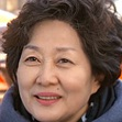 Iron Lady Cha-Lee Young-Hee.jpg